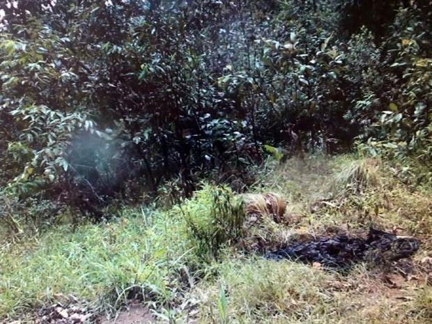 Segundo polícia, mulher sequestrada foi mantida em mata em Poços de Caldas (Foto: Reprodução EPTV)