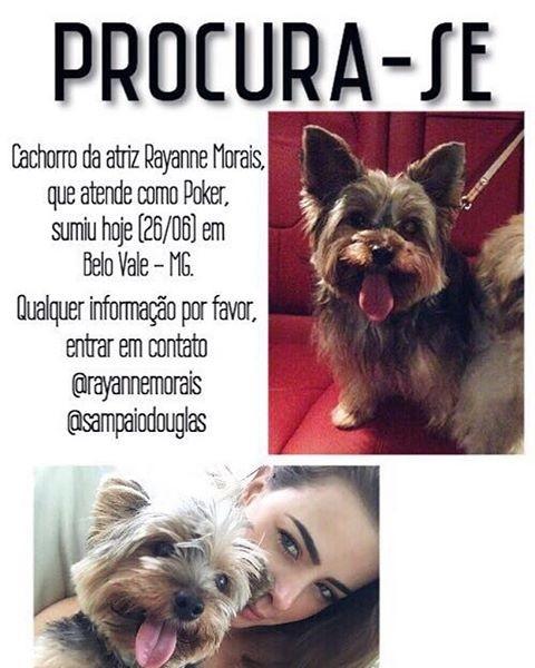 Rayanne Morais pede ajuda para encontrar cachorrinho (Foto: Reprodução / Instagram)