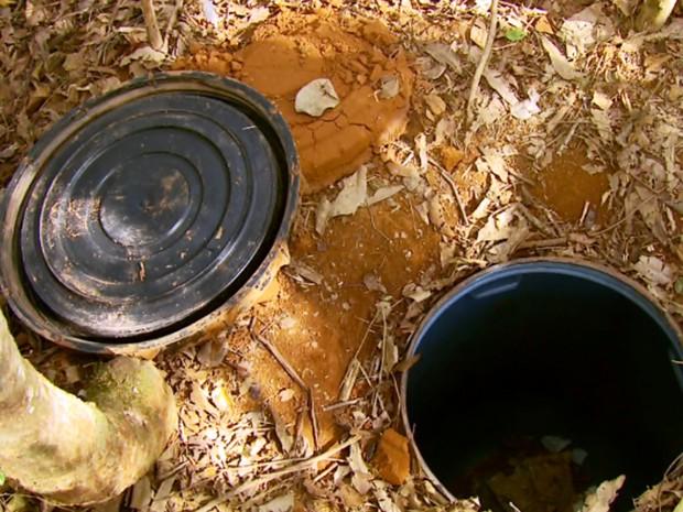 Maconha estava em tambor enterrado a cerca de 1,5 metro de profundidade em meio a cafezal de Paraguaçu (Foto: Reprodução/EPTV)