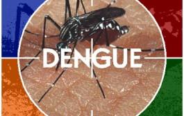 Dados sobre a dengue em Varginha são divulgados