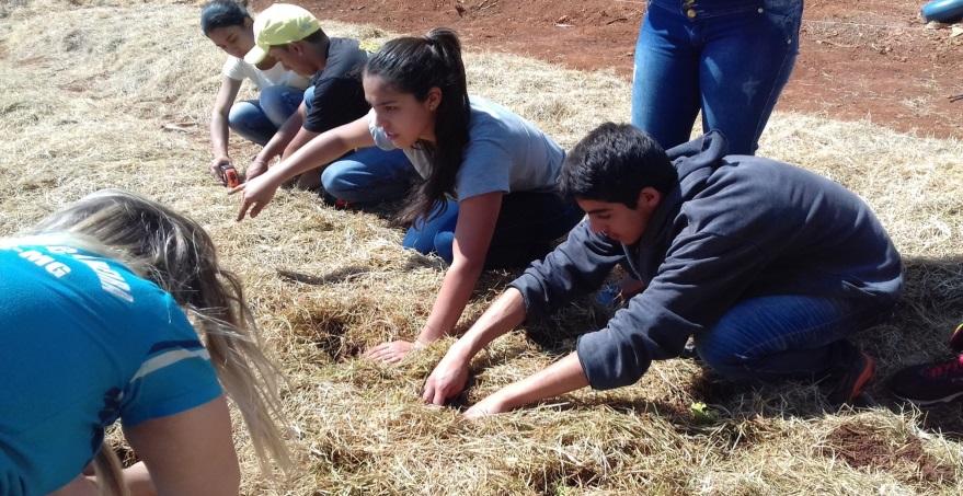 Os estudantes da escola também receberam informações sobre as técnicas corretas de cultivo, agroecologia (as verduras plantadas foram cultivadas sem emprego de agrotóxicos), conservação do solo, entre outras
