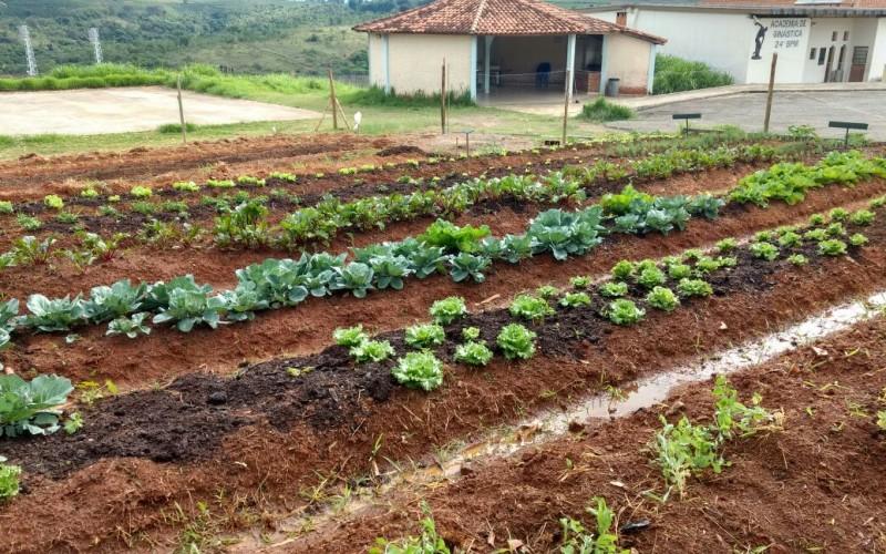 . O projeto foi inaugurado no dia 13 de setembro e teve o intuito de criar uma horta, no complexo do 24º Batalhão, para os alunos do ensino fundamental da Escola Estadual São Sebastião, a fim de que eles trabalhassem com os conceitos de sustentabilidade e com a alimentação saudável