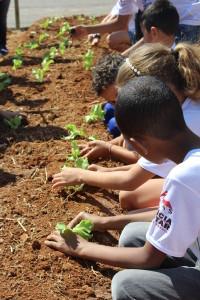 Nesse período as crianças puderam apreender que tudo aquilo que se planta no presente é a colheita do futuro