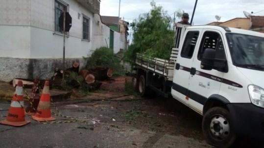 Chuva-provoca-queda-de-árvore-no-São-Geraldo-3