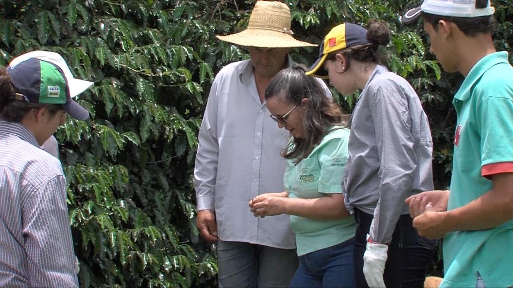 Preparar os jovens rurais para suceder os pais na lida com a terra e trabalhar em família fazem parte das prioridades dos cafeicultores de café arábica da Serra dos Lima, no município de Andradas.