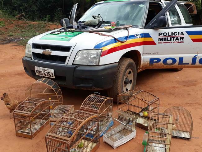 Polícia do Meio Ambiente de Varginha apreende arma de fogo e pássaros em Carmo da Cachoeira
