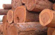 Homens armados roubam quase R$ 50 mil de madeireira em Guaxupé