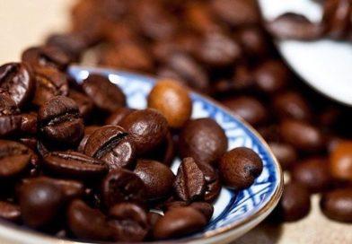 Senar oferecerá curso de recolhedora de café na região de Lavras