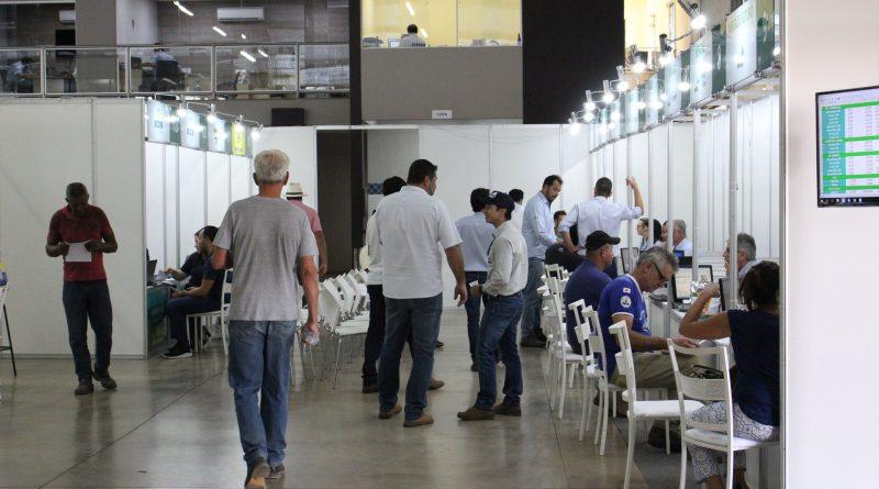Minasul injeta R$ 140 milhões na economia regional via pagamento de cafés negociados no Mercado Futuro