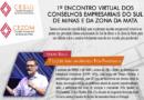 Primeiro encontro virtual dos Conselhos Empresariais do Sul de Minas