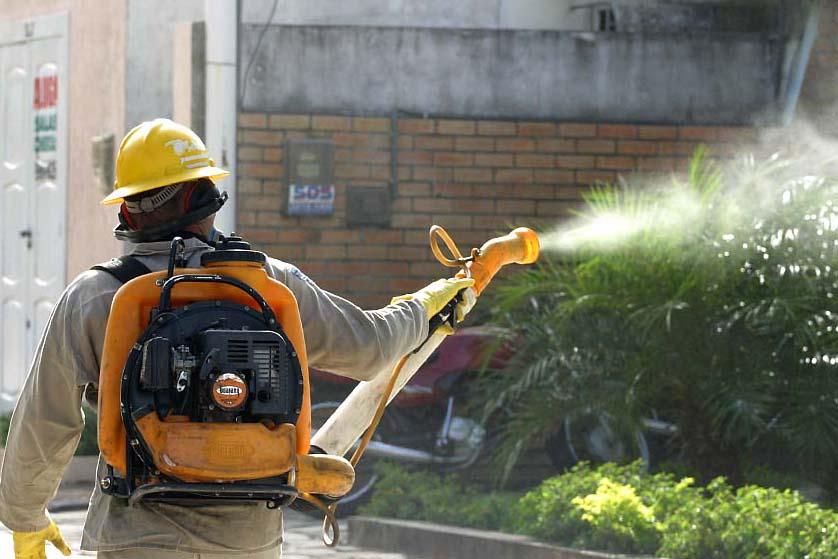 Combate-ao-mosquito-da-dengue-também-evita-a-febre-chikungunya
